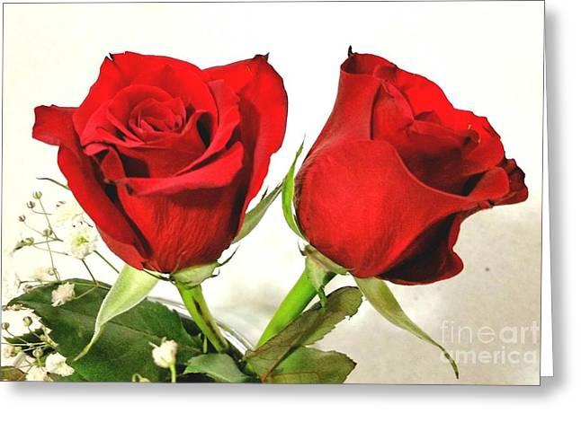 Red Roses 4 Greeting Card