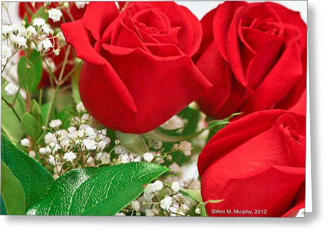 Red Roses With Baby's Breath Greeting Card