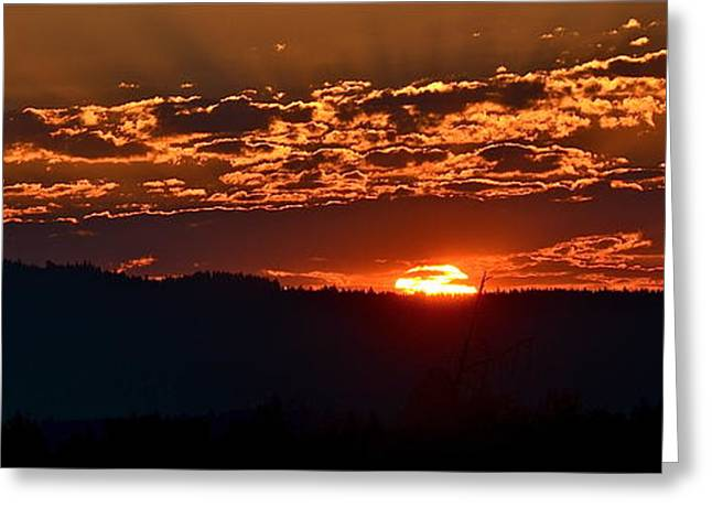 Greeting Card featuring the photograph Red Sky At Morning by Barbara Dudley