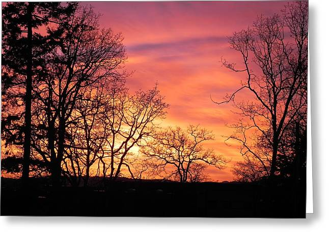 Red Sky At Night Sailor's Delight Greeting Card