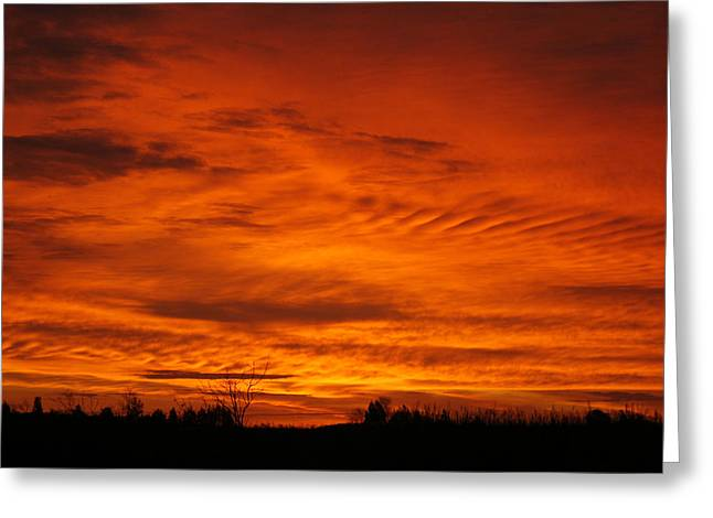 Red Sky In Morning Greeting Card