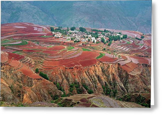 Red Soil Farmlands In Dongchuan District Greeting Card
