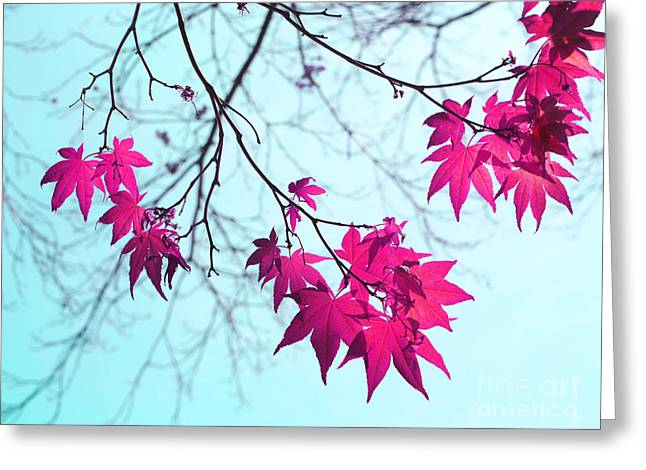 Red Star Clusters Greeting Card