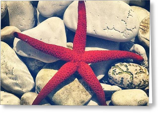 Red Star! Greeting Card