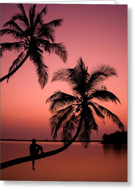 Red Sunset In The Tropics Greeting Card