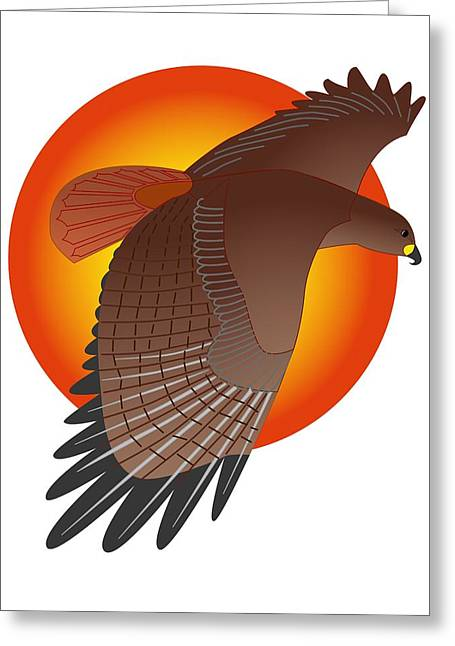 Red Tail Hawk And Sun Greeting Card by Fred Croydon