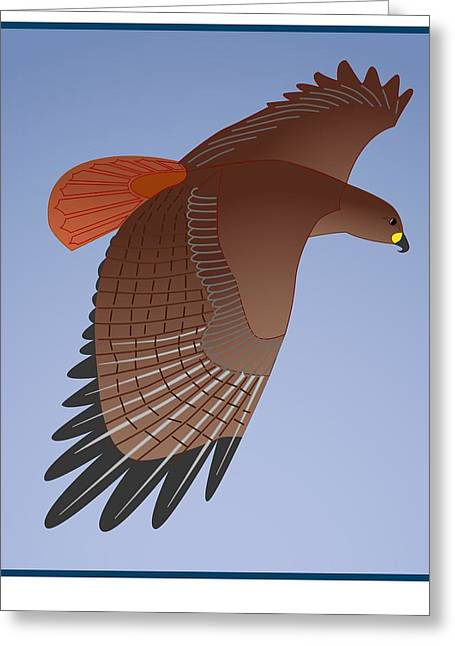 Red Tail Hawk Greeting Card by Fred Croydon