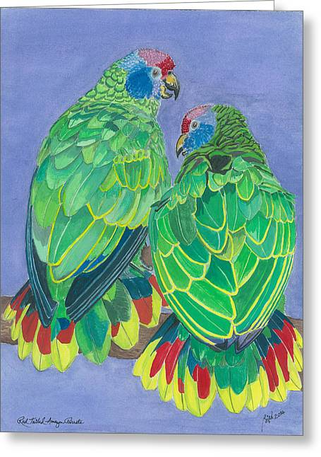 Red Tailed Amazon Parrots Greeting Card by Anthony Purification