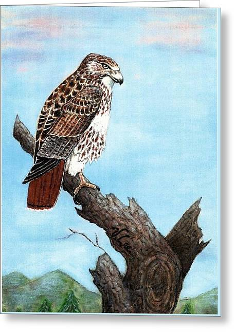 Greeting Card featuring the painting Red Tailed Hawk by VLee Watson