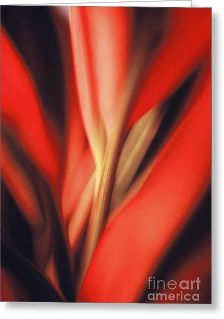 Red Ti Greeting Card