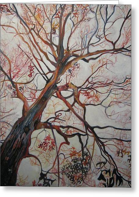 Red Tree Greeting Card by Devin Hunter