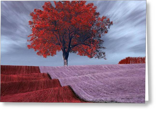 Greeting Card featuring the painting Red Tree In A Field by Bruce Nutting