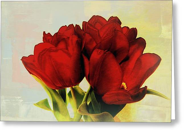 Red Tulips For A New Day Greeting Card by Carol Grenier
