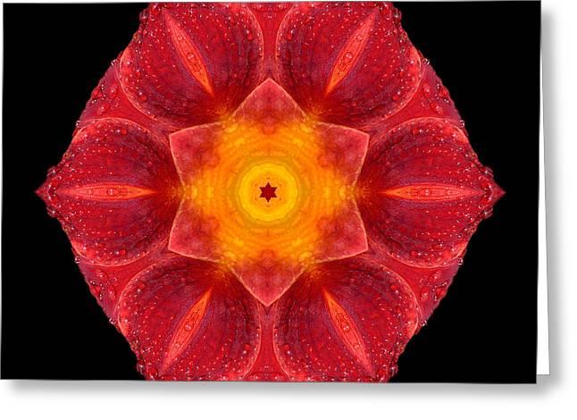 Red Wet Lily Flower Mandala Greeting Card by David J Bookbinder