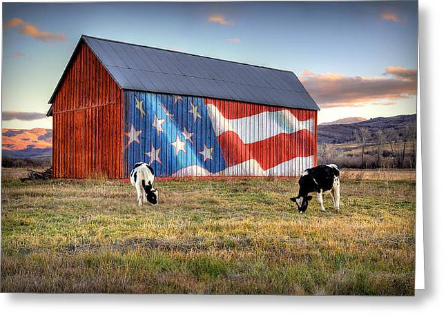 Red White And Moo Greeting Card