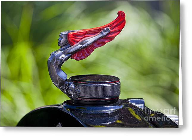 Red Wings Hood Ornament Greeting Card