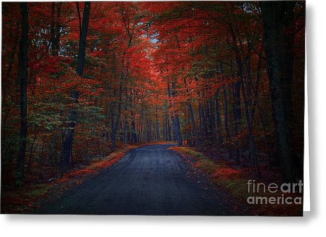 Red Woods Greeting Card by Marco Crupi