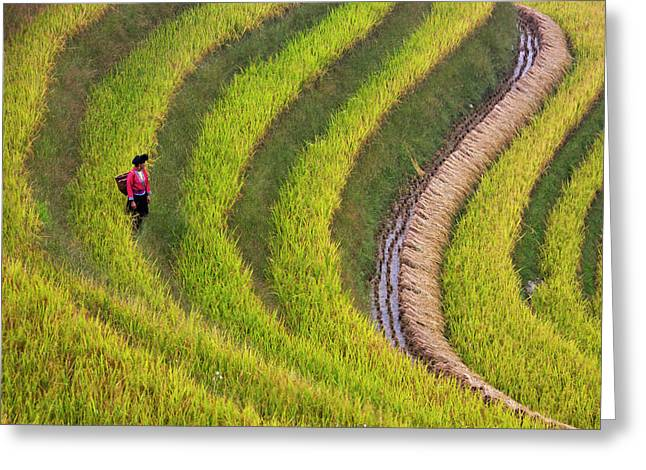 Red Yao Girl On The Rice Terrace Greeting Card