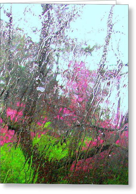 Redbud Trees Greeting Card