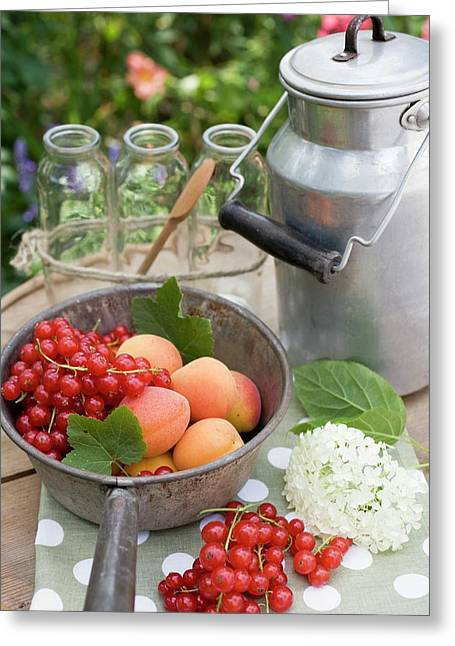 Redcurrants, Apricots, Bottles, Can On Garden Table Greeting Card