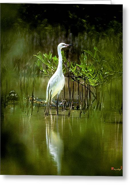Greeting Card featuring the photograph Reddish Egret 9c by Gerry Gantt
