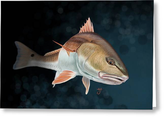 Redfish Inspection Greeting Card