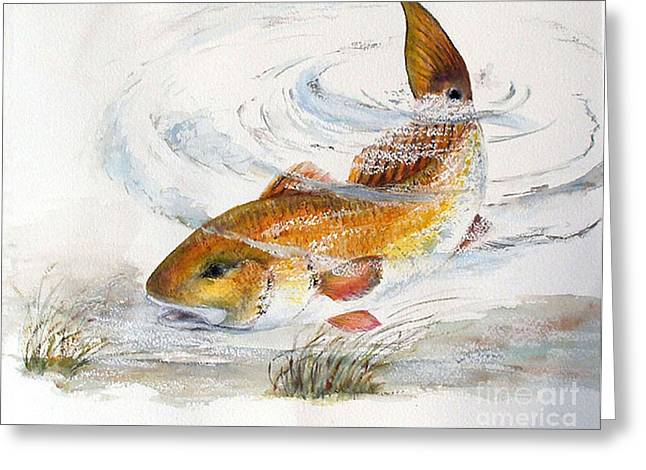 Redfish Greeting Card