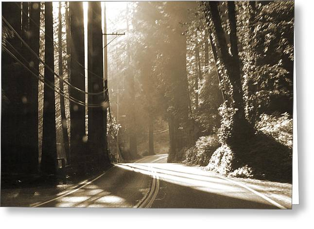 Redwood Drive Greeting Card by Mike McGlothlen