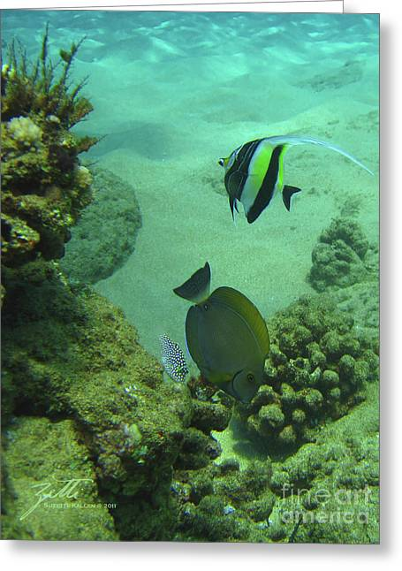 Reef Life Greeting Card