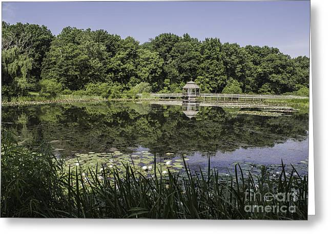 Refection In The Pond Greeting Card