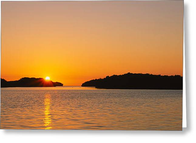 Refection Of Sun In Water, Everglades Greeting Card by Panoramic Images