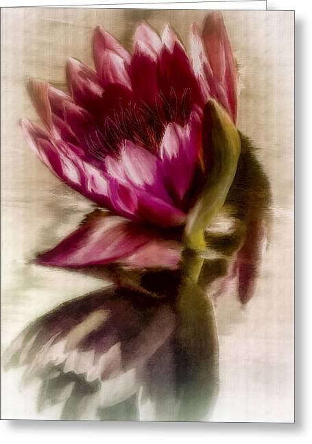 Reflected Waterlily Greeting Card by Jill Balsam
