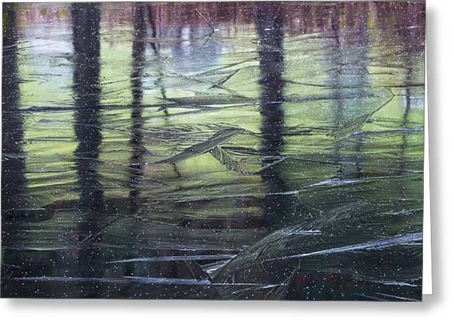 Reflecting On Transitions Greeting Card by Mary Amerman