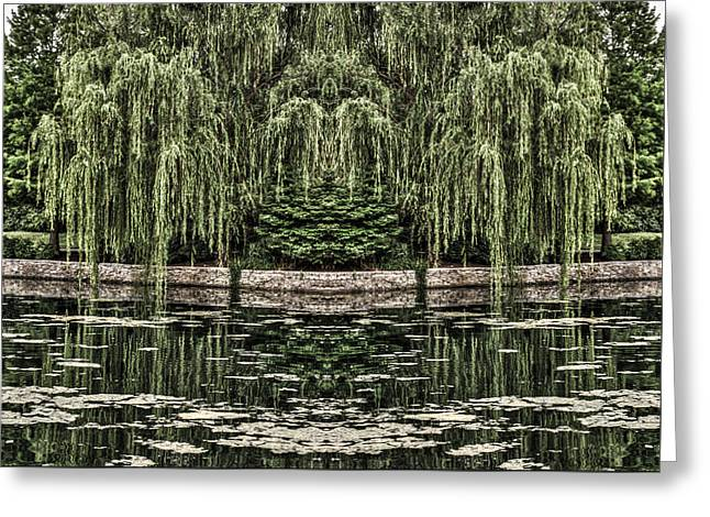 Reflecting Willows Greeting Card