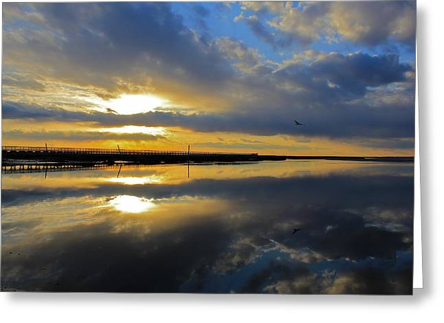 Greeting Card featuring the photograph Reflection Grays Beach Boardwalk by Amazing Jules