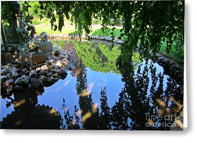 Reflection In The Pond Greeting Card
