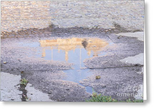 Reflection In The Puddle Greeting Card