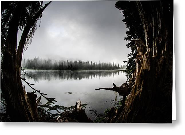 Reflection Lake Through The Stump Greeting Card by Brian Xavier
