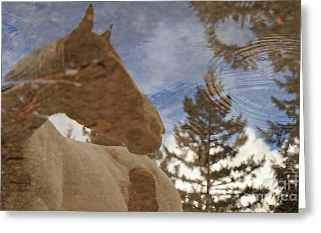 Upon Reflection Greeting Card