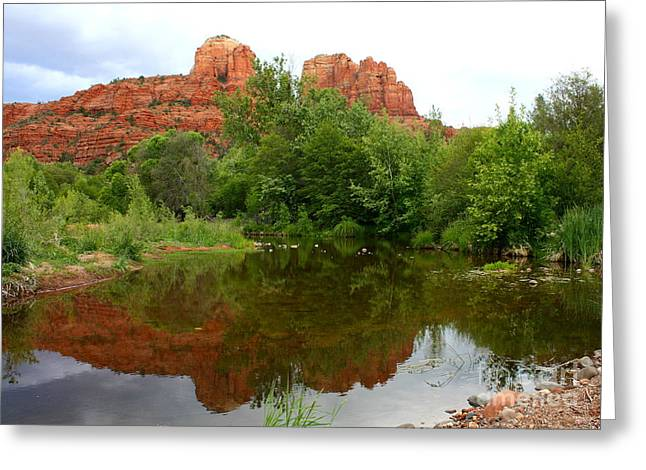 Reflection Of Cathedral Rock Greeting Card by Carol Groenen
