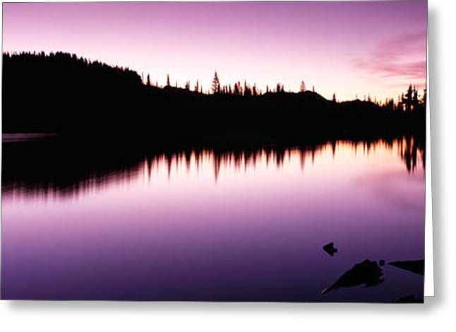 Reflection Of Trees In A Lake, Mt Greeting Card by Panoramic Images