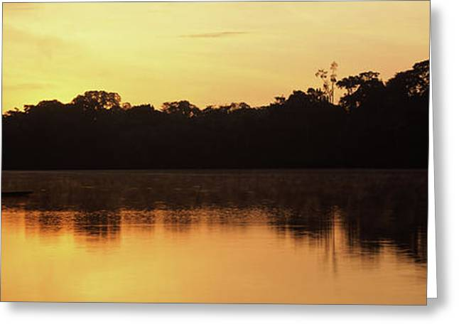 Reflection Of Trees In Napo River Greeting Card