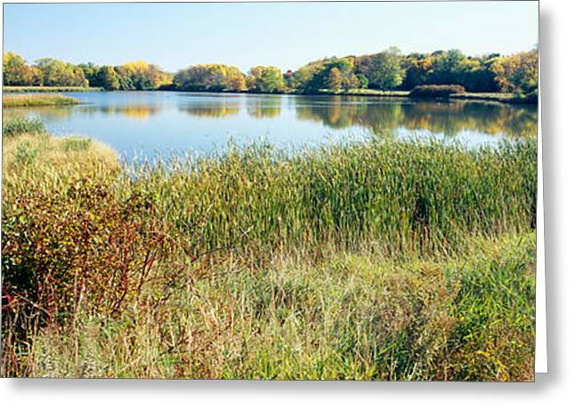 Reflection Of Trees In Water, Odana Greeting Card by Panoramic Images