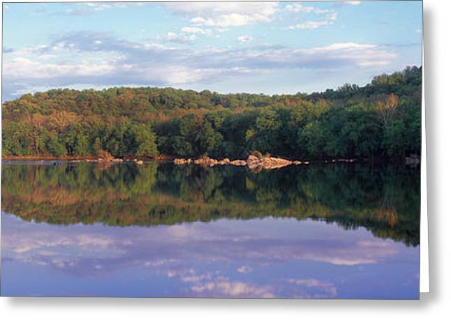 Reflection Of Trees On Water, Potomac Greeting Card