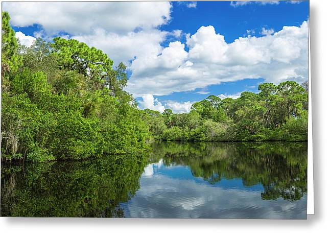 Reflection Of Trees On Water, South Greeting Card by Panoramic Images