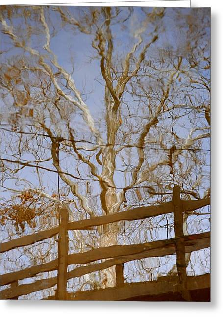 Reflection Greeting Card by Frozen in Time Fine Art Photography