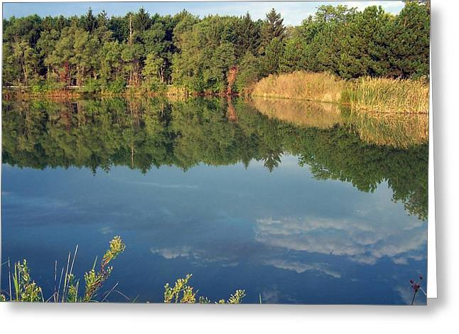 Greeting Card featuring the photograph Reflection by Teresa Schomig