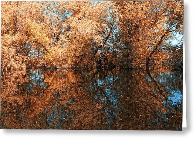 Reflections 3 Greeting Card by Vessela Banzourkova