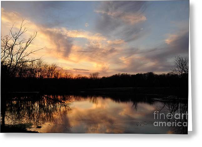 Greeting Card featuring the photograph Reflections by Cheryl McClure