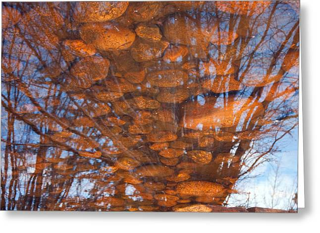 Reflections Greeting Card by Eric Rundle
